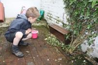 Thomas et les escargots - 17.05 (9)